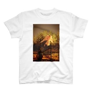 飛ぶ夢なんて飛ぶ夢でしかないのに T-shirts
