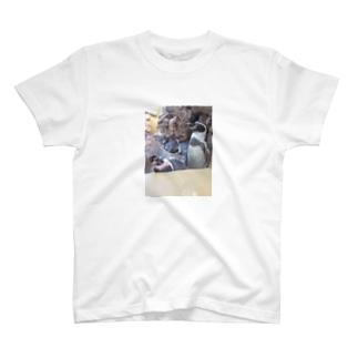 フンボルトぺんぎん T-shirts