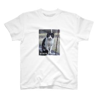 僕は野良猫 T-shirts