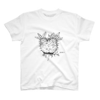 パキポディウム・ボタニカルアート(植物)  T-shirts