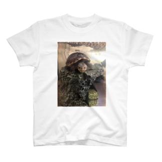 エビが欲しいお顔(コロン) T-shirts