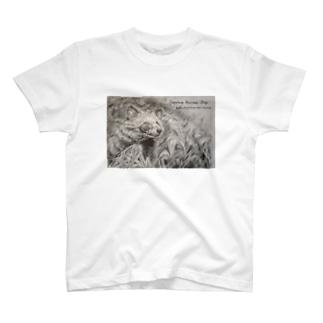 ほんどたぬきのシリーズ T-shirts
