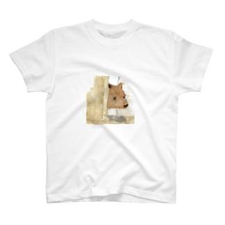 こぐまちゃん T-Shirt