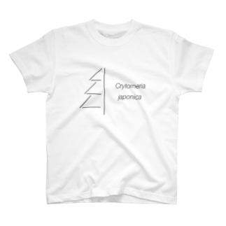 杉 ・スギ (学名) T-shirts