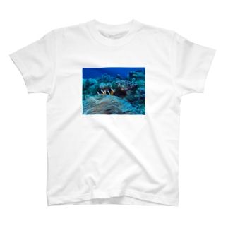 クマノミ T-shirts