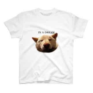 気まぐれしょっぷの夢の中 T-shirts