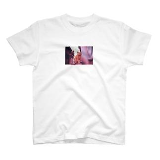 """猫-NNSS-2019 """"momo"""" T-shirts"""