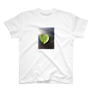 ハートの葉っぱ T-shirts