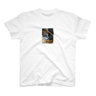 うちの兄弟 T-shirts