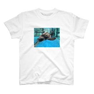 BT𓆉𓇼 T-shirts