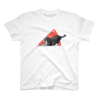 ネコの45° Tシャツ