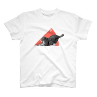 ネコの45° T-shirts