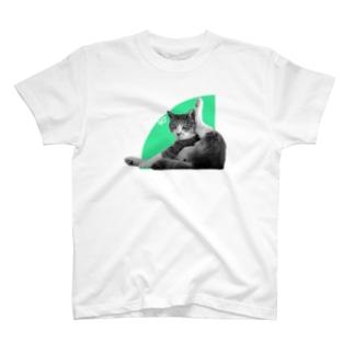 ネコの90° T-shirts