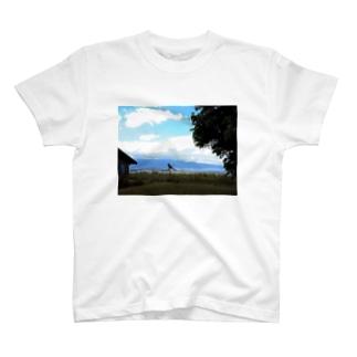 マウイ ヨガA T-shirts