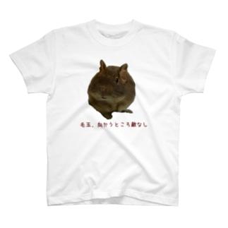 無敵の毛玉 パイタン T-shirts