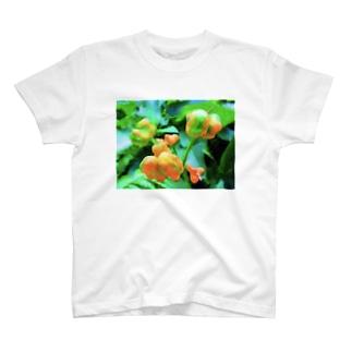 黄い実 T-shirts