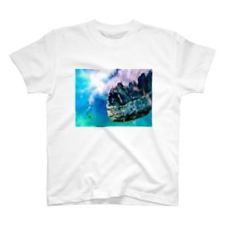 うろこ T-shirts