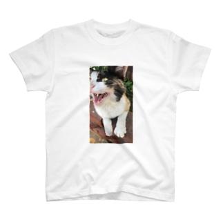 元部下のにゃーん T-shirts