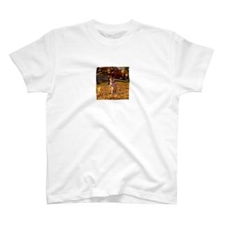 紅葉とフーマ T-shirts