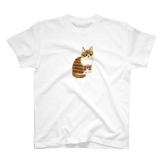 しまネコさん Tシャツ