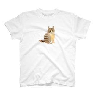はちわれしまネコさん Tシャツ