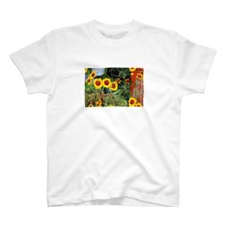 どこかの雑草Tシャツ T-shirts