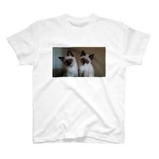 ジェングウのわがやのねこ T-shirts