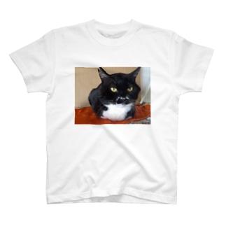 さす待ちマスクん T-shirts