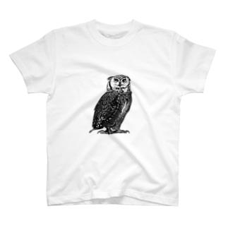 フクロウさん T-shirts