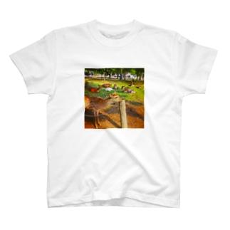 あごのせ奈良の鹿 T-shirts