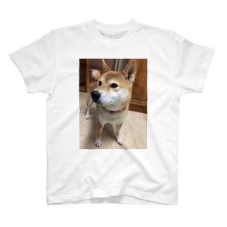 いつでも傍♡ T-shirts