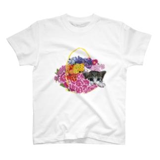 ねこちゃんシリーズ T-shirts