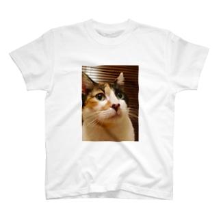 Ran 耳をすませば ネコ T-shirts