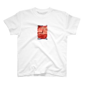 29 T-shirts
