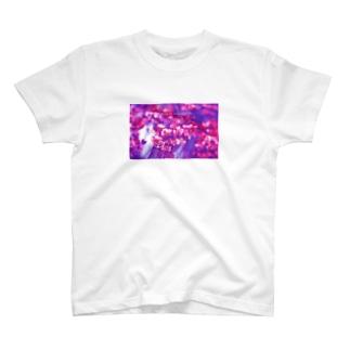 As soon as man is born he begins to die.  T-shirts
