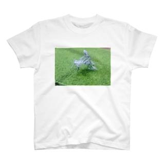 青姦 T-shirts