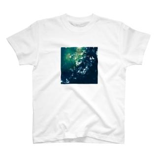 翠色 T-shirts