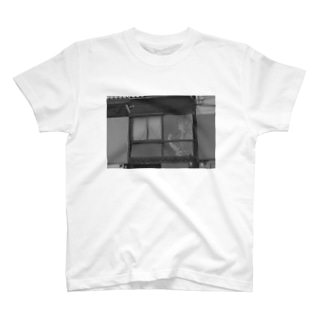 Window Knows The Beauty T-shirts