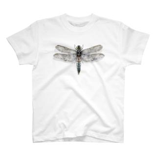 とんぼ T-shirts