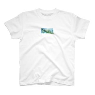 ヒメジオン T-shirts