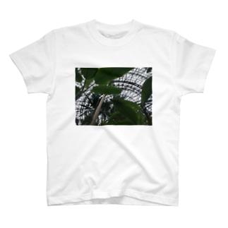 植物園 T-shirts