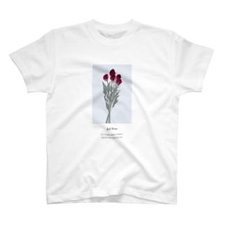 花言葉 rose T-shirts