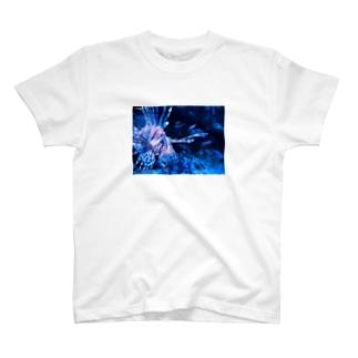 水の中のお魚 T-shirts