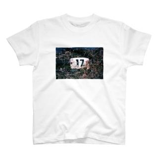 17. T-shirts