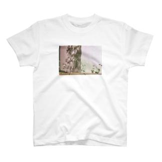 night T-shirts