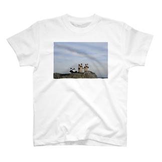石ころパンダ T-shirts