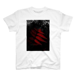 紅色 T-shirts