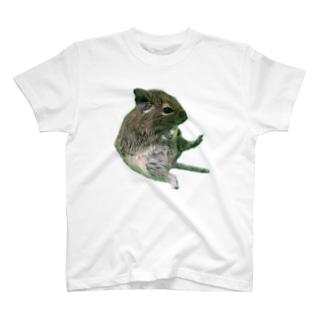 お座りデグー T-shirts