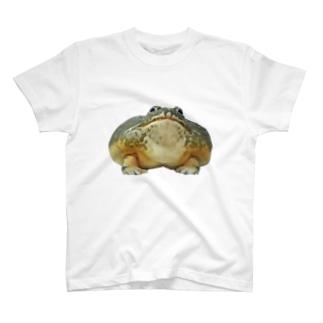 アフウシ、マダムのドアップ T-shirts