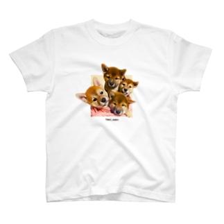 【tomi_moon】柴犬のとびだす!4姉妹 カラー T-shirts